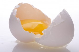 egg_raw_egg_yolk